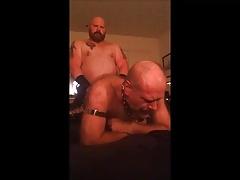 DaddyBruin fucking leather bear hole.mp4