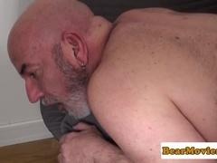 Pierced polar bear anally pounded