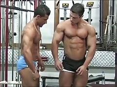 Muscle Sex Films