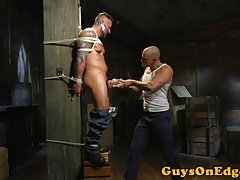 Inked sub tied up jerked and toyed for edging