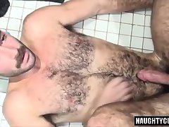 Hairy bear oral sex with cumshot