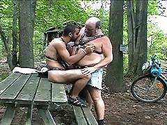 big bear fucking in the woods