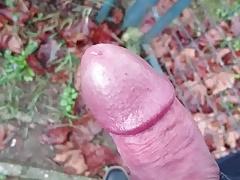 Cum in park