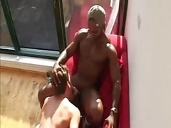Huge ebony prick for white homosexual