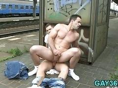 A couple of queer fellows have an intercourse hard