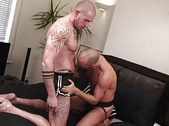 Dude with shaved head is on his knees deep throating hard cock