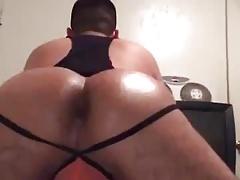 Latin Ass