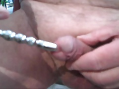 sounding urethra with cum