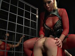 Gorgeous dominatrix punishes her submissive