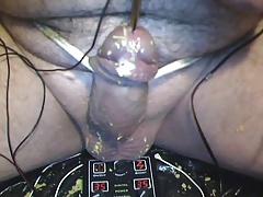 cbt4 : urethra electro torture