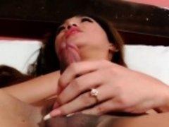 Piladyboy beauty jerking her hard cock