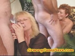 Swinging GRANNIES, Cream pie eating & a wide variety of Young-looking Kittens