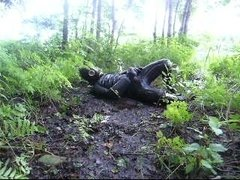frogman quickly jerks off in shallow mud