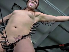 Redhead sub pussyclamped and toyed