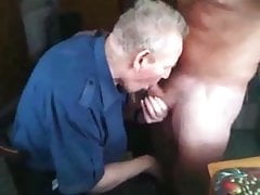 Senior grandpa sucking a nice cock