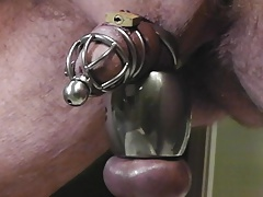 Pissing in chastity