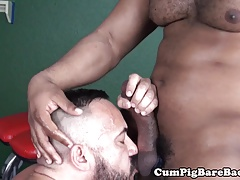 Tattooed bear cocksucking BBC before bareback