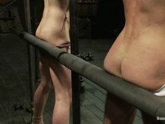 Two queers get tortured by two dominators in BDSM scene