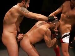 Fight, fuck & fist