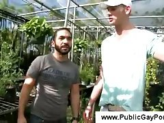 Tall white man kisses an arabic guy