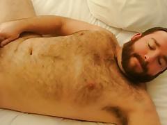 Hairy chub cuming