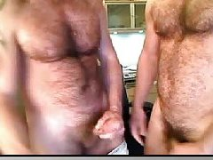 Hairy Studs Mutual Wanking On Cam