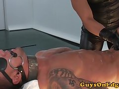 Edged studs dominated before allowed to cum